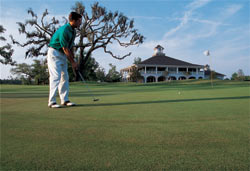 A golfer on the green at Dunes West in Mount Pleasant